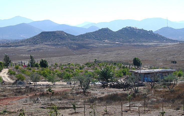 Foto de terreno comercial en venta en  , guadalupe, ensenada, baja california, 1191983 No. 01