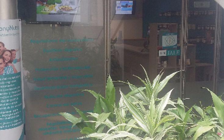 Foto de local en renta en, guadalupe inn, álvaro obregón, df, 2036236 no 01