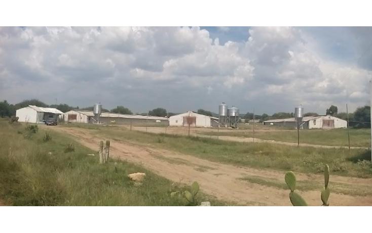 Foto de terreno comercial en venta en  , guadalupe la venta, el marqués, querétaro, 1410403 No. 01