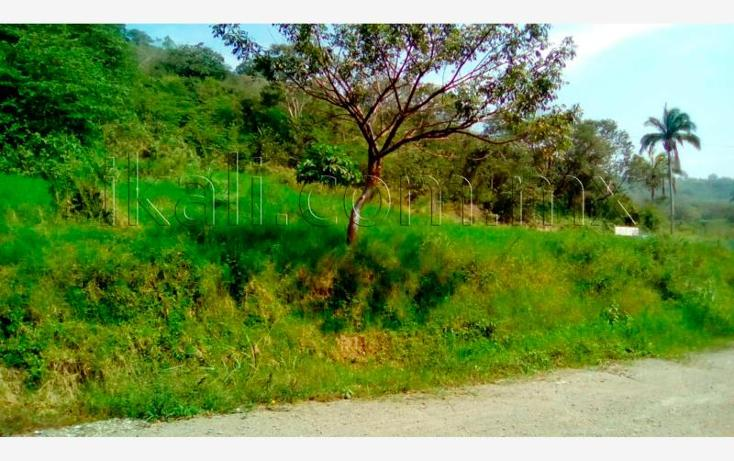 Foto de terreno habitacional en venta en  , guadalupe, papantla, veracruz de ignacio de la llave, 2682636 No. 03