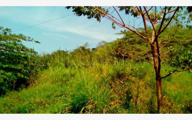 Foto de terreno habitacional en venta en  , guadalupe, papantla, veracruz de ignacio de la llave, 2682636 No. 04