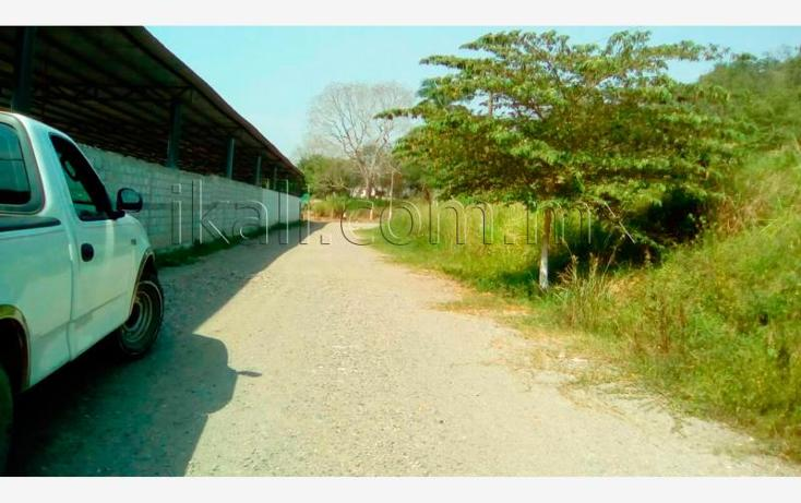 Foto de terreno habitacional en venta en  , guadalupe, papantla, veracruz de ignacio de la llave, 2682636 No. 07