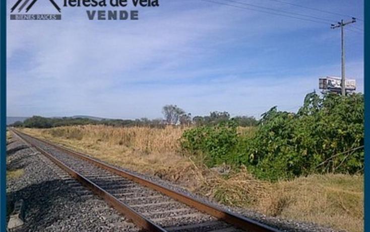 Foto de terreno comercial en venta en  , guadalupe, san francisco del rinc?n, guanajuato, 1254863 No. 04