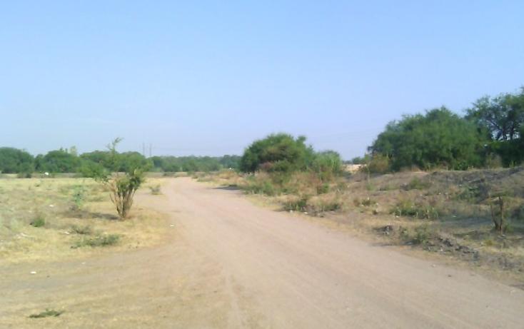 Foto de terreno habitacional en venta en  , guadalupe, san francisco del rincón, guanajuato, 1871764 No. 13
