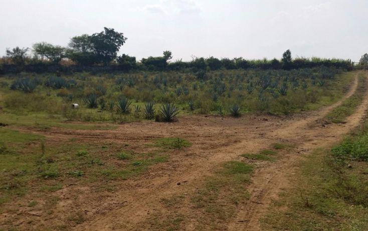 Foto de terreno comercial en venta en, guadalupe, tala, jalisco, 1680746 no 01