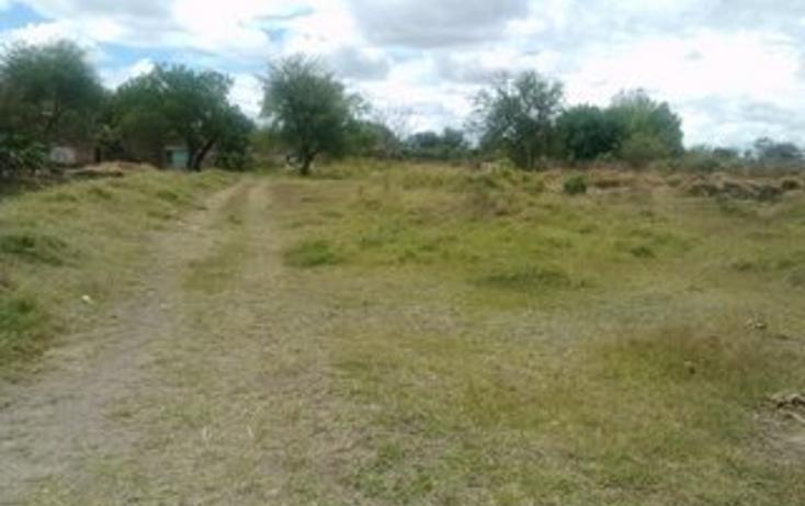 Foto de terreno habitacional en venta en  , guadalupe, tala, jalisco, 1856314 No. 07