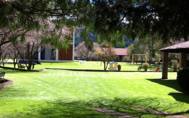 Foto de terreno habitacional en venta en  , guadalupe victoria, capulhuac, m?xico, 1021751 No. 06
