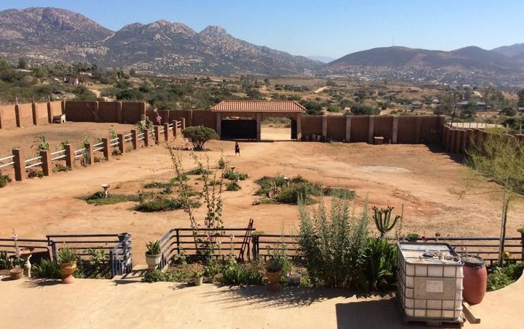 Foto de terreno comercial en venta en  , guajardo, tecate, baja california, 1233635 No. 02