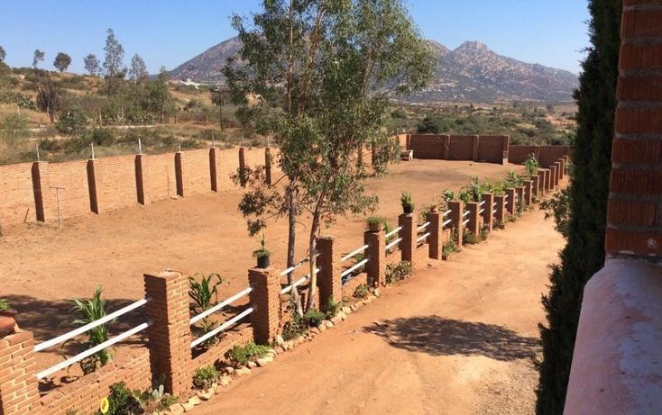 Foto de terreno comercial en venta en  , guajardo, tecate, baja california, 1233635 No. 13