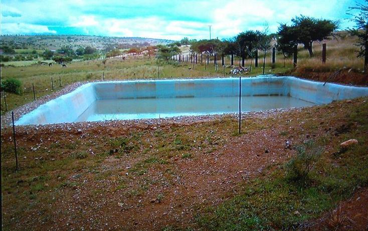 Foto de rancho en venta en  , guanajuato, dolores hidalgo cuna de la independencia nacional, guanajuato, 1862348 No. 03