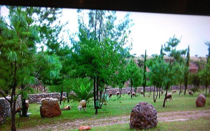 Foto de rancho en venta en  , guanajuato, dolores hidalgo cuna de la independencia nacional, guanajuato, 1862348 No. 04