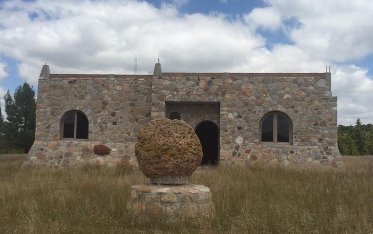 Foto de rancho en venta en  , guanajuato, dolores hidalgo cuna de la independencia nacional, guanajuato, 1862348 No. 11