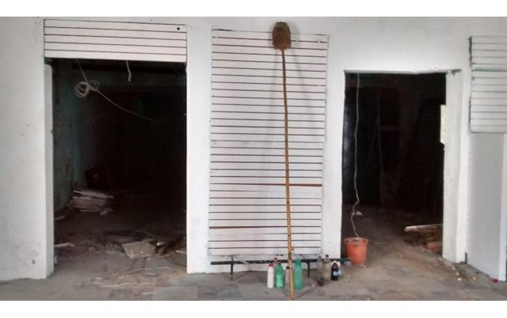 Foto de local en renta en  , guanal, carmen, campeche, 1644754 No. 04