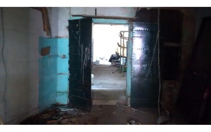 Foto de local en renta en  , guanal, carmen, campeche, 1644754 No. 06