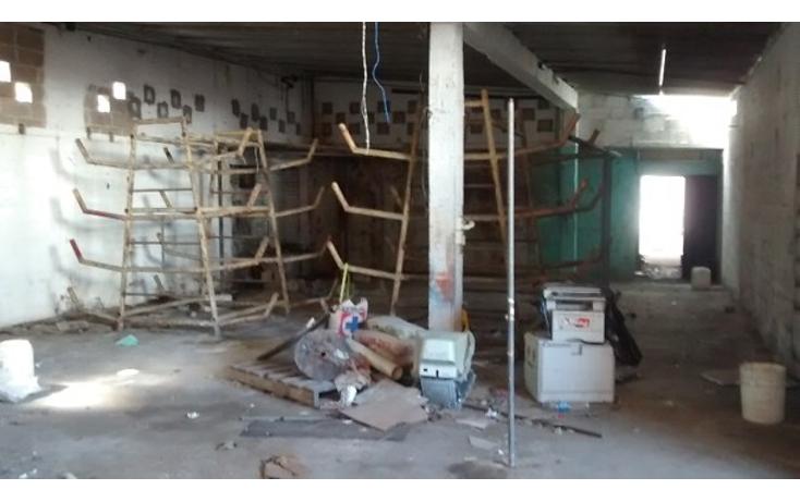 Foto de local en renta en  , guanal, carmen, campeche, 1644754 No. 09