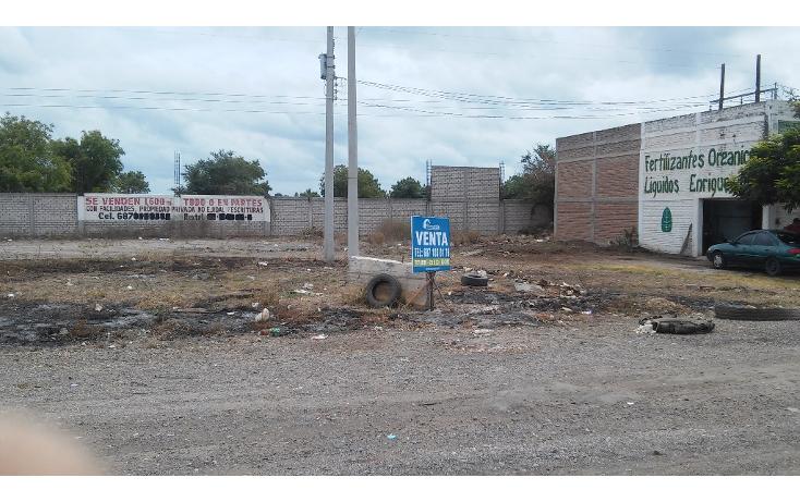 Foto de terreno comercial en venta en  , guasavito, guasave, sinaloa, 1110163 No. 02