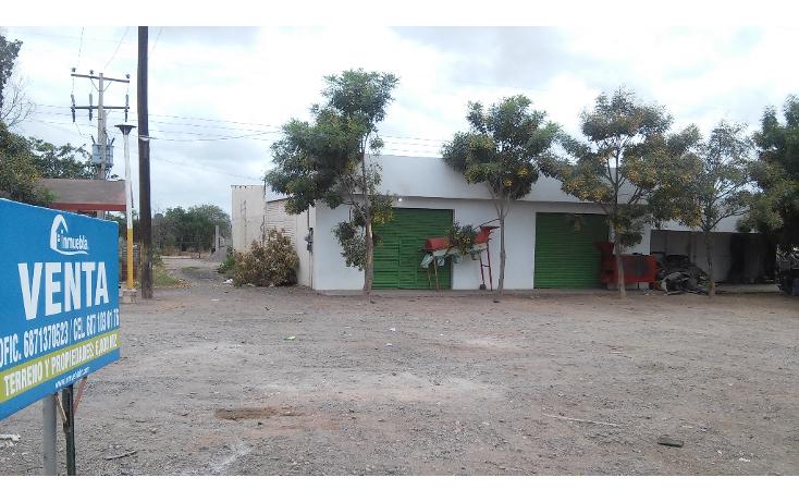 Foto de local en venta en  , guasavito, guasave, sinaloa, 1267907 No. 05
