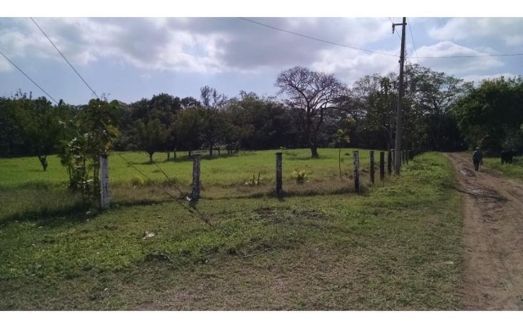 Foto de terreno habitacional en venta en  , guasimal, medellín, veracruz de ignacio de la llave, 1275017 No. 01