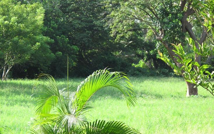 Foto de terreno habitacional en venta en  , guasimal, medellín, veracruz de ignacio de la llave, 1275017 No. 02