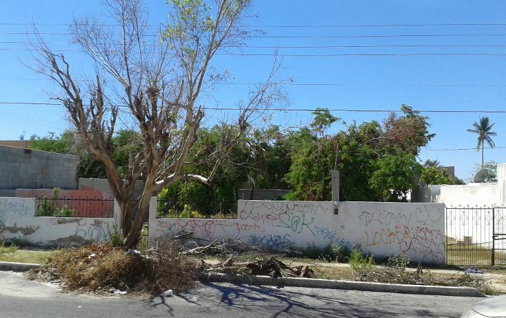 Foto de terreno habitacional en venta en  , guerrero, la paz, baja california sur, 1454439 No. 02