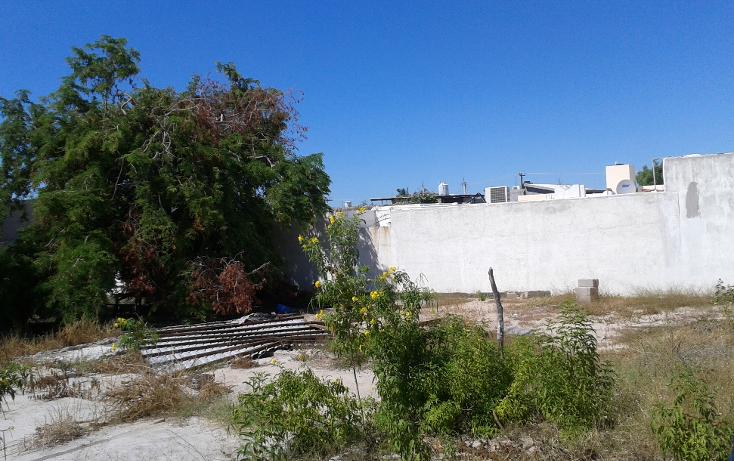 Foto de terreno habitacional en venta en  , guerrero, la paz, baja california sur, 1454439 No. 04