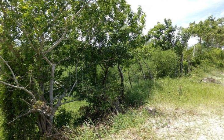 Foto de terreno habitacional en venta en guillermo prieto, los pinos, tuxpan, veracruz, 1320751 no 04
