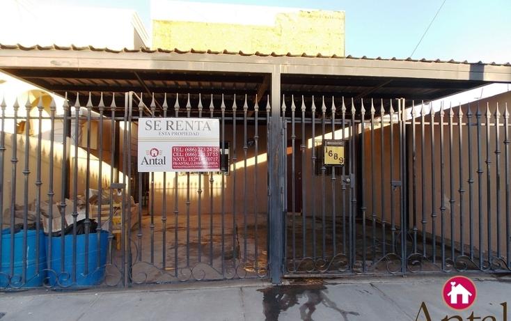 Foto de casa en renta en  , hacienda de lourdes, mexicali, baja california, 1565059 No. 01