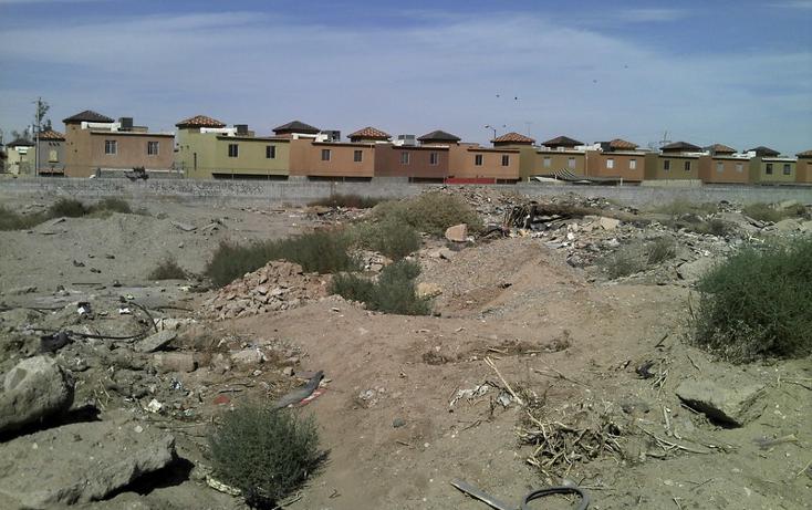Foto de terreno comercial en renta en  , hacienda la encantada, mexicali, baja california, 1202631 No. 03