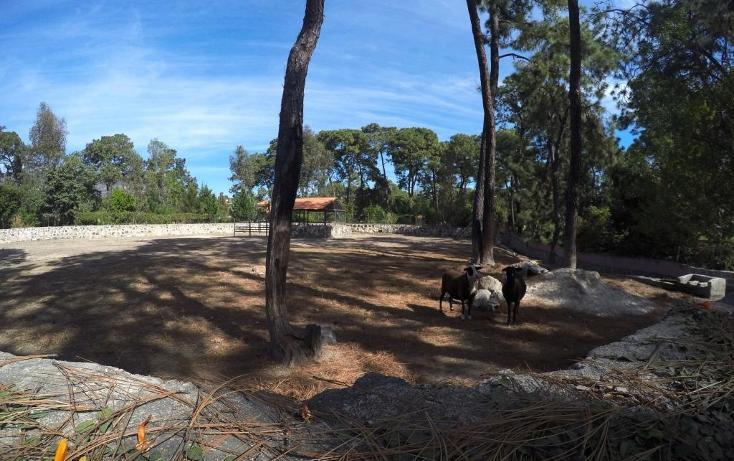 Foto de rancho en venta en  , hacienda la herradura, zapopan, jalisco, 1466323 No. 46