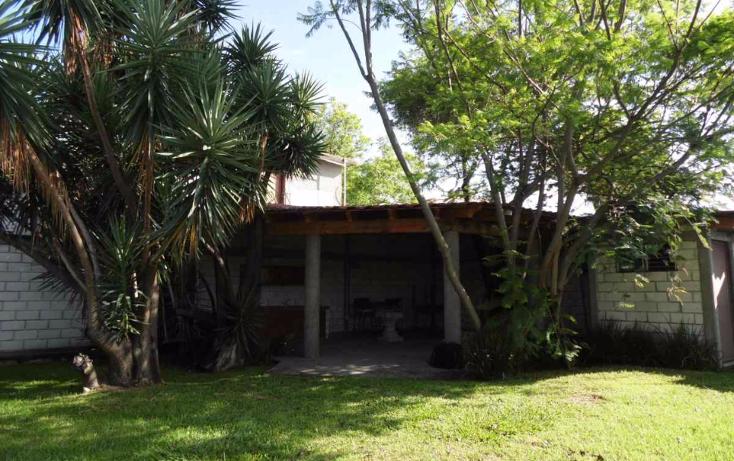 Foto de local en renta en  , hacienda tetela, cuernavaca, morelos, 2035460 No. 10