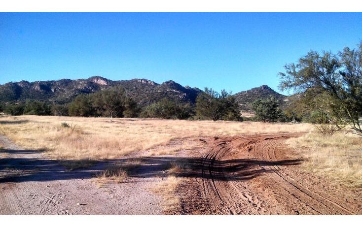 Foto de terreno comercial en venta en  , haciendas del sur, hermosillo, sonora, 1211489 No. 01