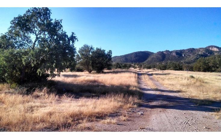 Foto de terreno comercial en venta en  , haciendas del sur, hermosillo, sonora, 1211489 No. 03