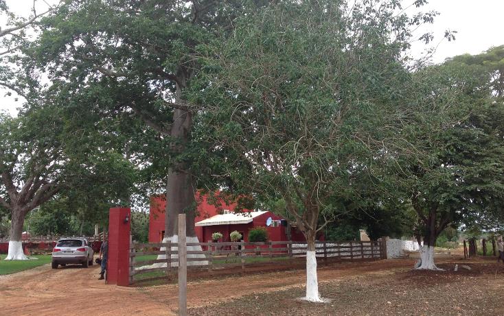 Foto de rancho en venta en  , hecelchakan, hecelchakán, campeche, 1302797 No. 01