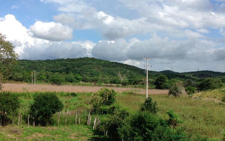 Foto de rancho en venta en  , hecelchakan, hecelchakán, campeche, 1302797 No. 15