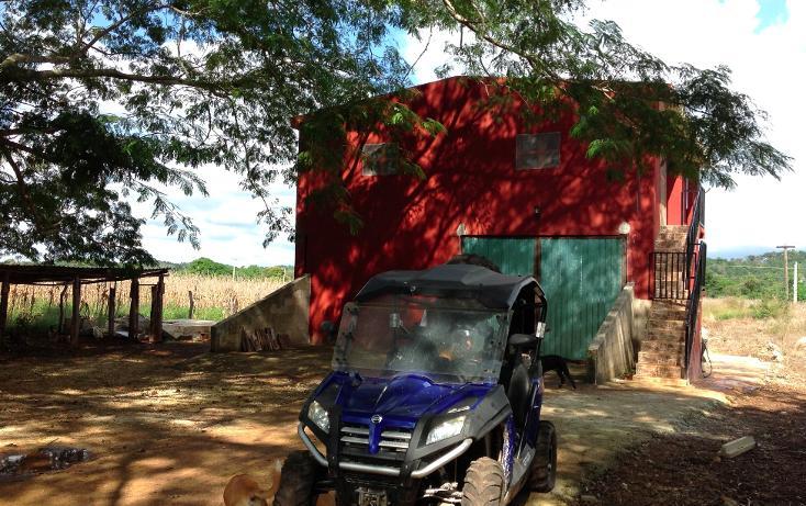 Foto de rancho en venta en  , hecelchakan, hecelchakán, campeche, 1302797 No. 18