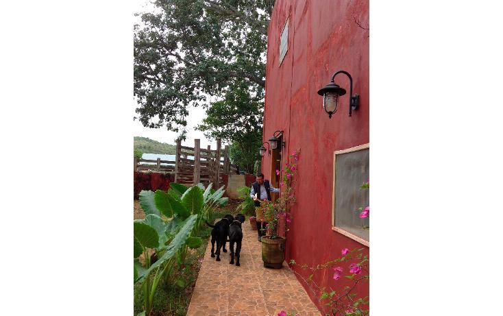 Foto de rancho en venta en  , hecelchakan, hecelchakán, campeche, 1302797 No. 21