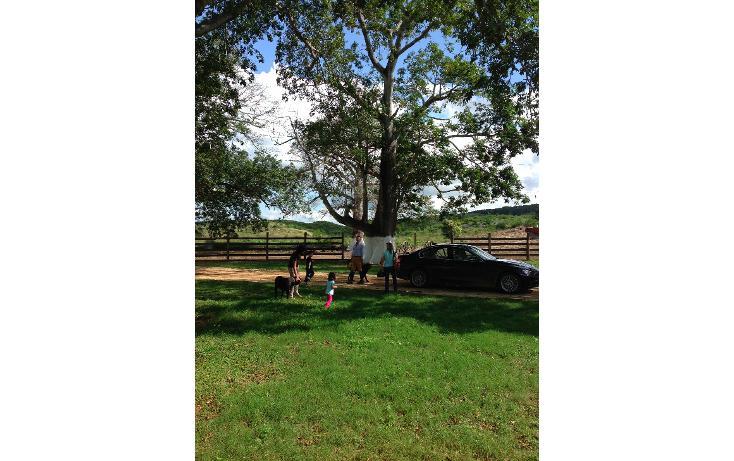 Foto de rancho en venta en  , hecelchakan, hecelchakán, campeche, 1302797 No. 23