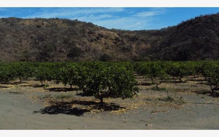 Foto de terreno comercial en venta en  , heriberto jara, ahuacatlán, nayarit, 398312 No. 02