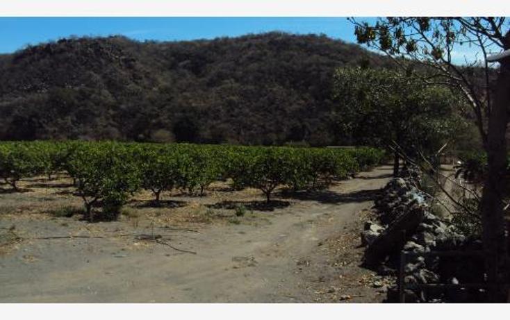 Foto de terreno comercial en venta en  , heriberto jara, ahuacatlán, nayarit, 398312 No. 04