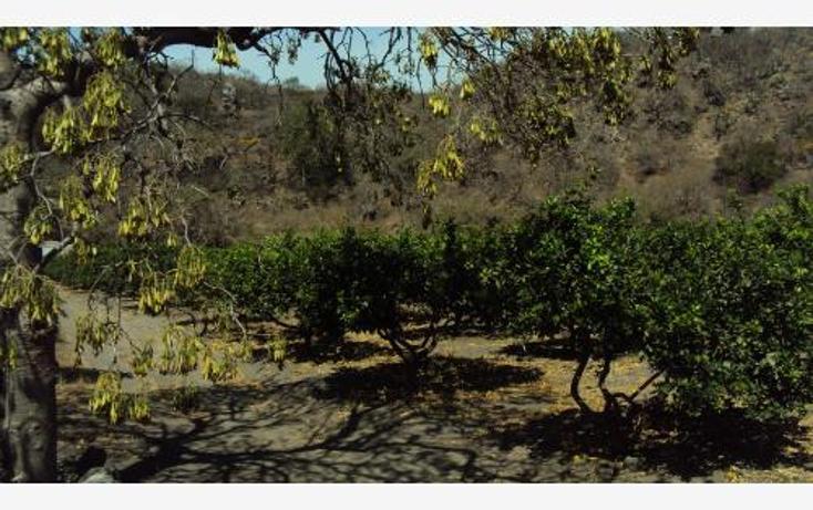 Foto de terreno comercial en venta en  , heriberto jara, ahuacatlán, nayarit, 398312 No. 05