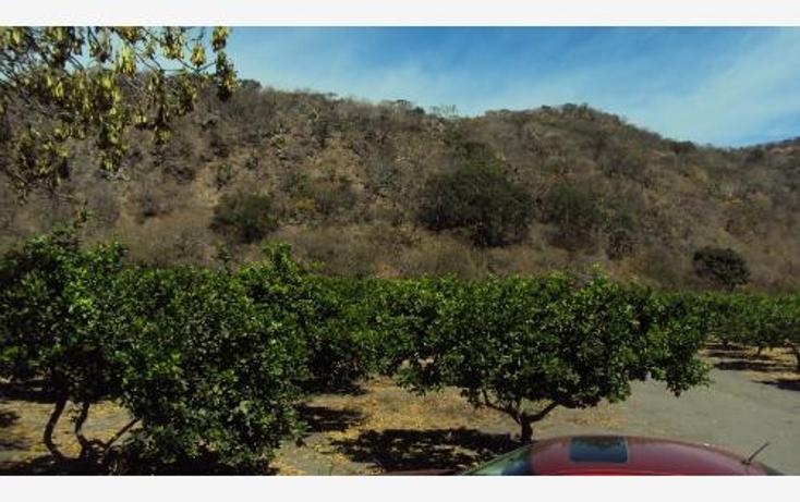 Foto de terreno comercial en venta en  , heriberto jara, ahuacatlán, nayarit, 398312 No. 06