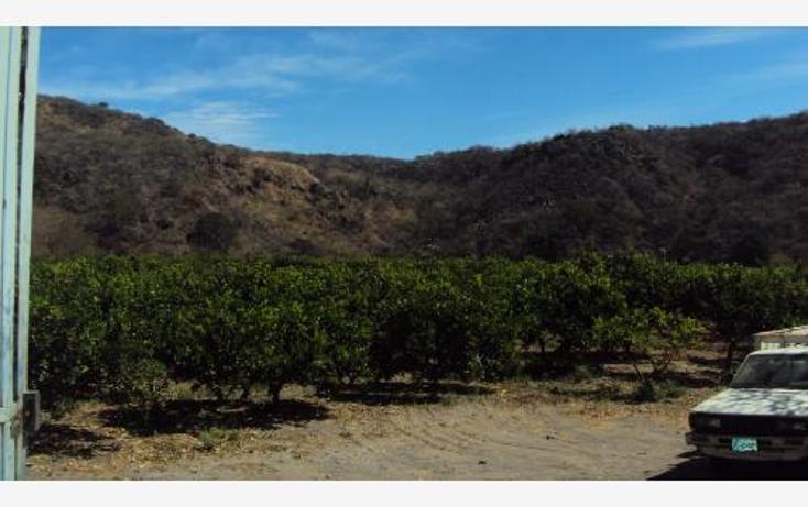 Foto de terreno comercial en venta en  , heriberto jara, ahuacatlán, nayarit, 398312 No. 09