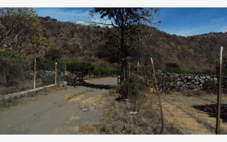 Foto de terreno comercial en venta en  , heriberto jara, ahuacatlán, nayarit, 398312 No. 10