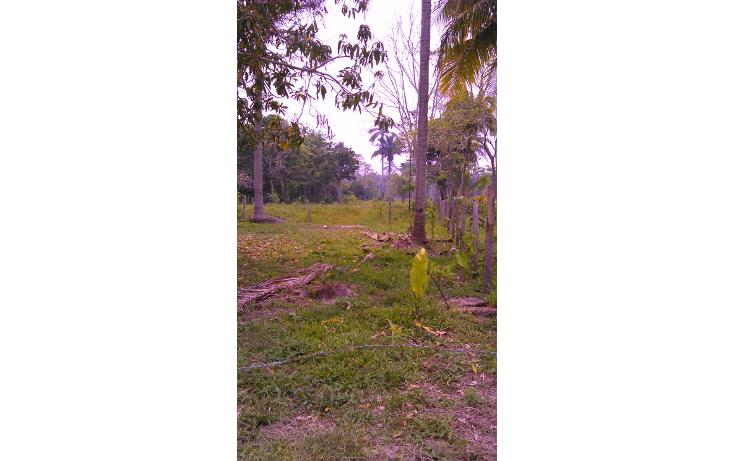 Foto de terreno comercial en venta en  , hermenegildo galeana 1a secc, jalpa de m?ndez, tabasco, 1101811 No. 04