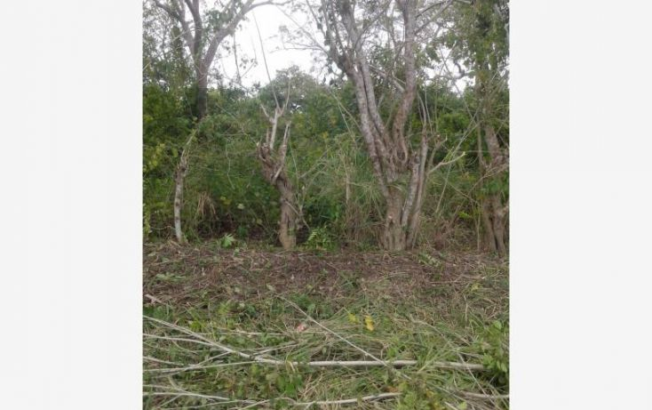 Foto de terreno comercial en venta en heroes de nacozari, túxpam de rodríguez cano centro, tuxpan, veracruz, 1707444 no 10