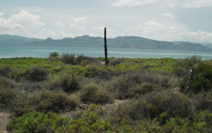 Foto de terreno comercial en venta en  , heroica mulegé centro, mulegé, baja california sur, 1140139 No. 04