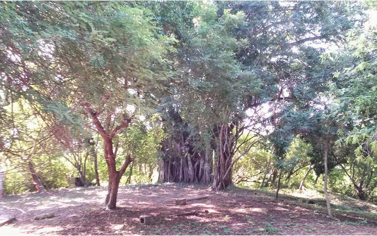 Foto de terreno habitacional en venta en  , higuera blanca, bahía de banderas, nayarit, 1125177 No. 08