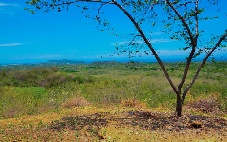 Foto de terreno habitacional en venta en  , higuera blanca, bahía de banderas, nayarit, 1132851 No. 02