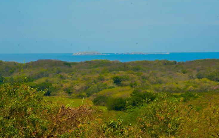Foto de terreno habitacional en venta en  , higuera blanca, bahía de banderas, nayarit, 1351825 No. 01