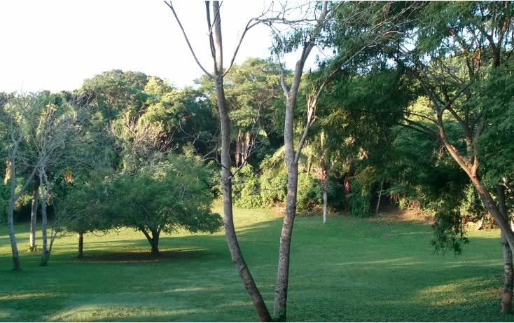 Foto de terreno habitacional en venta en  , higuera blanca, bahía de banderas, nayarit, 1351825 No. 09